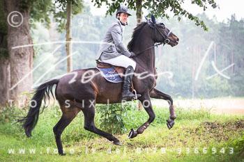 2015_08_16_Jagd_Schnellenberg-068.jpg