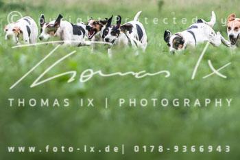 2015_08_16_Jagd_Schnellenberg-077.jpg