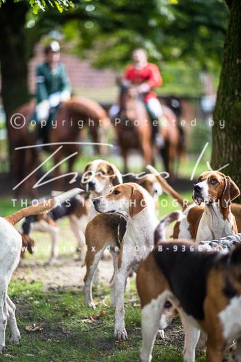 2015_09_26_Jagd_Neddenaverbergen-052.jpg