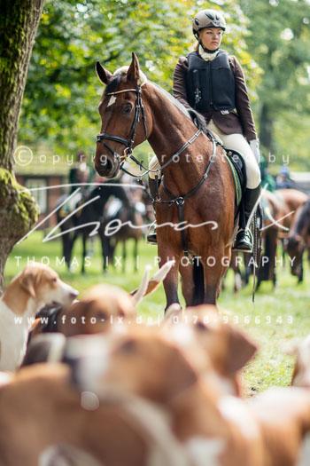 2015_09_26_Jagd_Neddenaverbergen-053.jpg