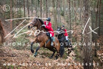 2015_11_28_Jagd_Toppenstedt-096.jpg