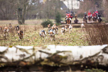 06 - Jagd Verden