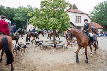 2016_09_03_Jugendjagd_Marienau-016.jpg