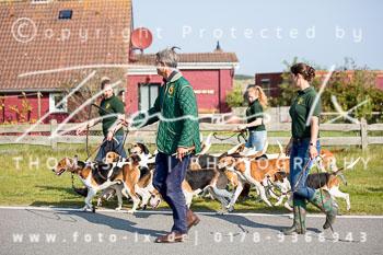 2017_09_04_Hundearbeit_NM_Norderney-016.jpg