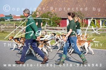 2017_09_04_Hundearbeit_NM_Norderney-017.jpg