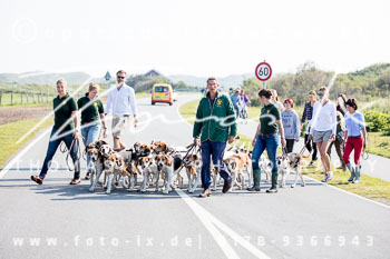 2017_09_04_Hundearbeit_NM_Norderney-021.jpg