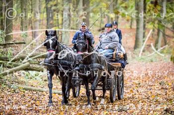2017_10_28_Jagd_Neuhardenberg-302.jpg