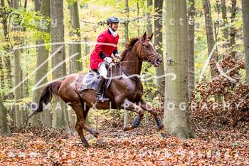 2017_10_28_Jagd_Neuhardenberg-318.jpg