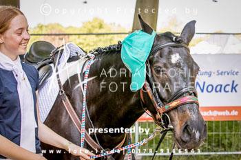 2018_05_13_HSJV_Derby_Fohl-001.jpg