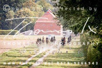 2018_08_18_Basthorst_Damenjagd-031.jpg