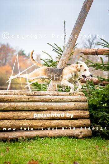 2018_11_18_Jagd_Harsefeld_Fo-324.jpg