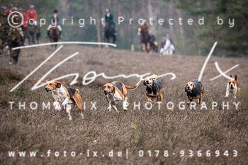 2018_12_15_Jagd_Hermannsburg-208.jpg