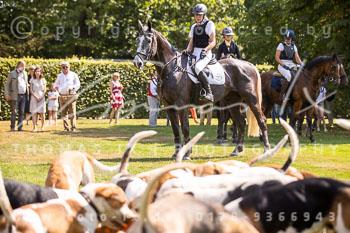 2020_08_16_Basthorst_Damenjagd-116.jpg
