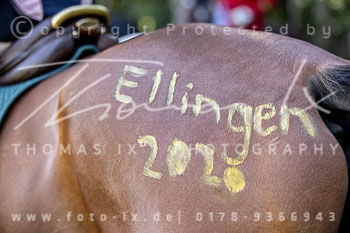 2020_08_30_Ellingen-036.jpg